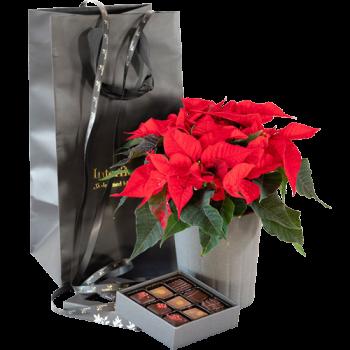 Juletradisjon med potte og sjokoladefristelse, 9 biter